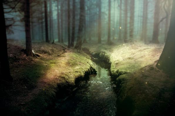 Saarland: Psychotherapie nach dem Heilpraktikergesetz: Gesprächstherapie im Regionalverband Saarbrücken